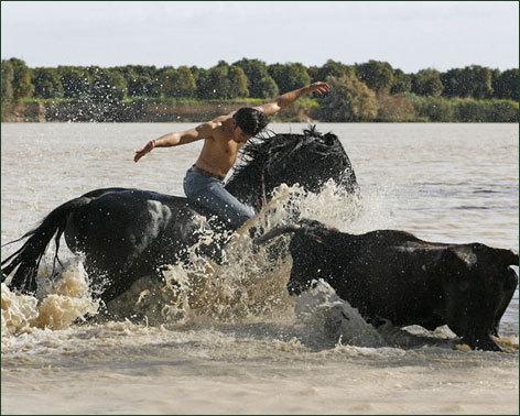 EN EL AGUA. Espectaculares imágenes toreando en el agua.