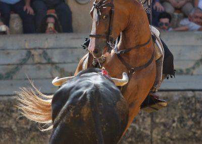 Ronda013