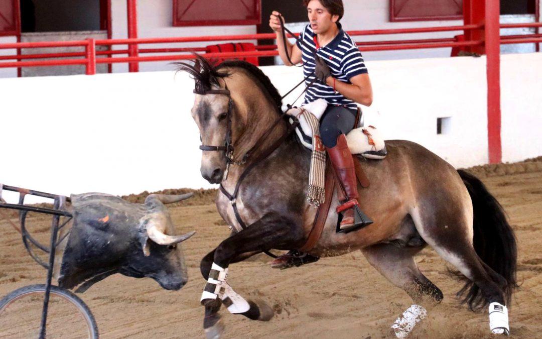 Diego Ventura exhibe su cuadra en Tijuana
