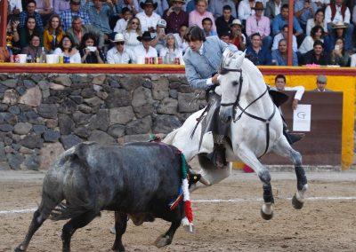 León036