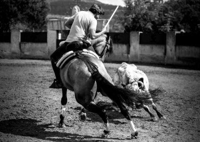 Torreon de Canas010