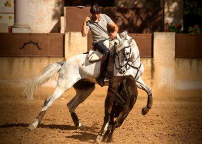 Torreon de Canas015