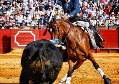 Sevilla003