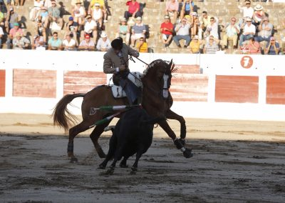 Linares002