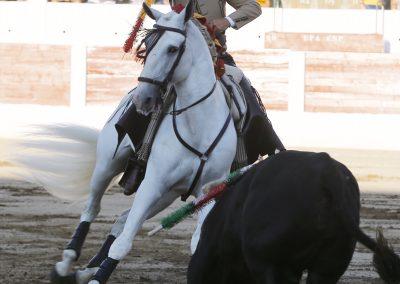 Linares007