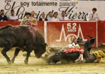 Guadalajara017