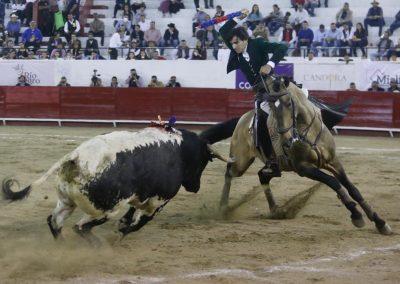 León010
