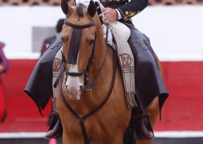 Querétaro009