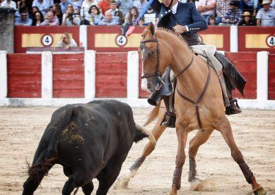 Talavera014