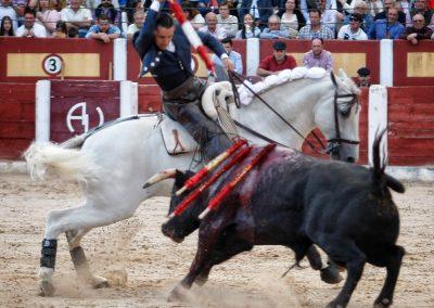 Talavera020