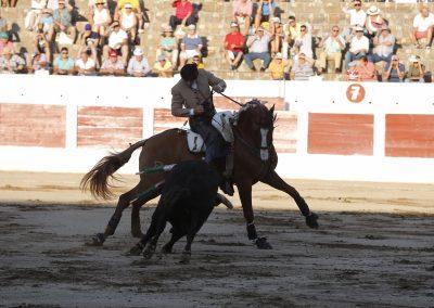 Linares003
