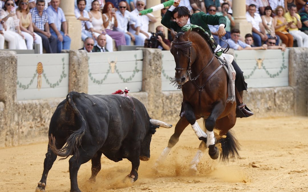 Diego Ventura, baja por lesión en Ejea de los Caballeros